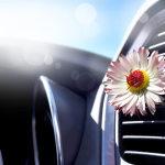 klima-avto-vonj