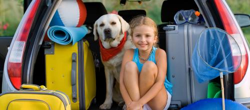 Preventivni pregled vozila pred odhodom na dopust